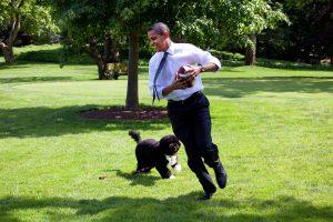 オバマと犬